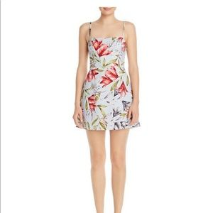 Cadencia whisper sweetheart floral mini dress